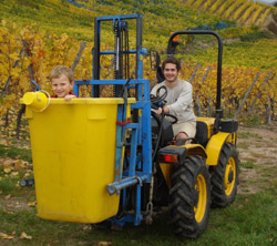 Vendanges_2008_tracteur.jpg (32 KB)